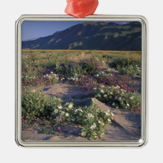 Califorinia, Anza-Borrego Desert SP, Sand Metal Ornament