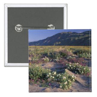 Califorinia, Anza-Borrego Desert SP, Sand Pinback Button