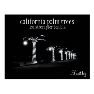 CALIFORINIA PALM TREES by iLuvit biz - post card
