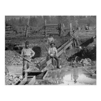 California 1850 de los mineros de la fiebre del postal