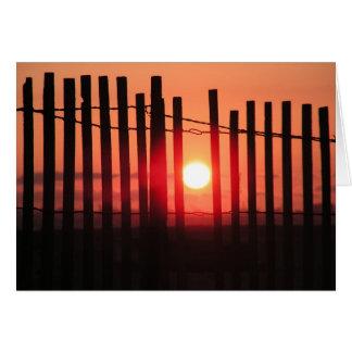 california 2008 cards