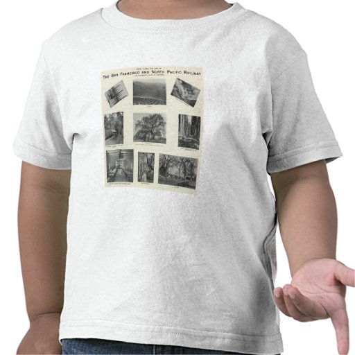 California 4 shirt
