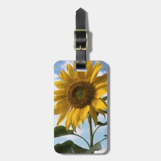 California, A Mammoth Sunflower (Helianthus) 4 Luggage Tag