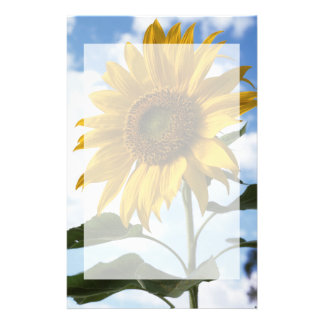 California, A Mammoth Sunflower (Helianthus) 4 Stationery