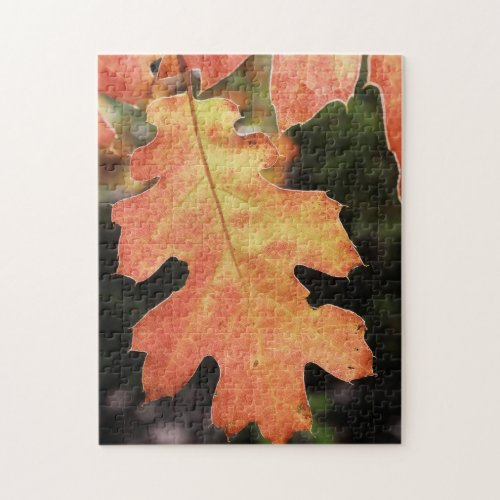 Autumn colored Oak leaf Jigsaw Puzzles