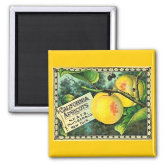 California Apricots - Vintage Crate Label 2 Inch Square Magnet