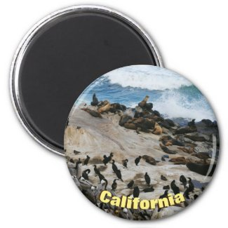 California Beach Magnet
