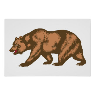 California Bear Poster