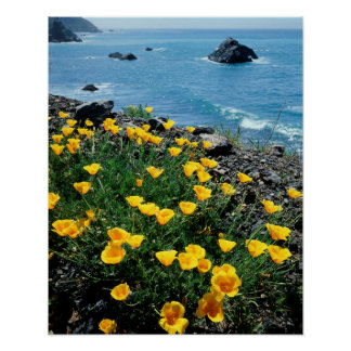 California, Big Sur Coast, Central Coast 1 Poster