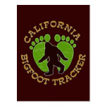 California Bigfoot Tracker Postcard