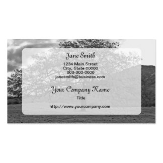 California Black Oak B/W Double-Sided Standard Business Cards (Pack Of 100)