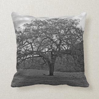 California Black Oak B/W Pillows