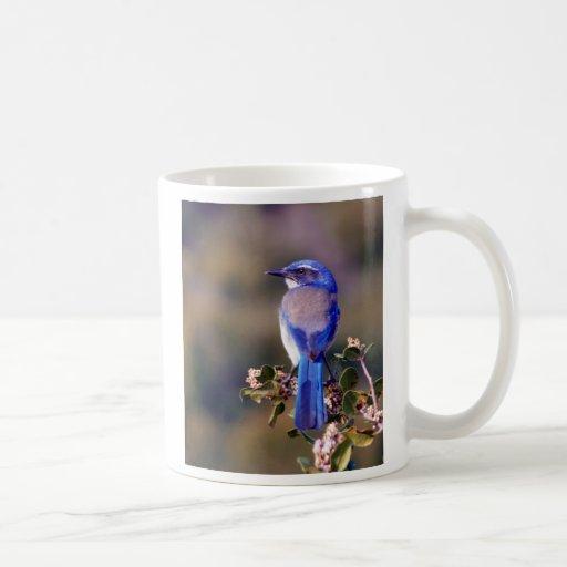 California Blue Coffee Mug