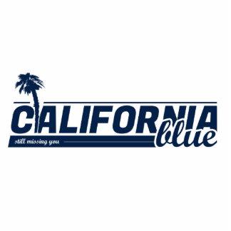 California Blue Magnets Cutout