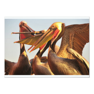 California Brown Pelicans Card