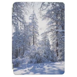 California, Cleveland National Forest, Laguna 1 iPad Air Cover