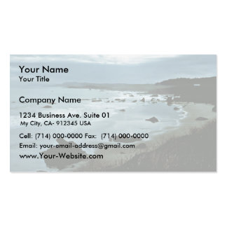 California coast Double-Sided standard business cards (Pack of 100)