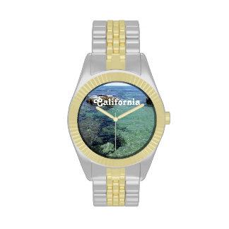 California Coast Watch