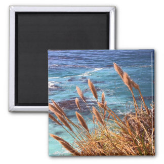 California Coastal Magnet Fridge Magnets