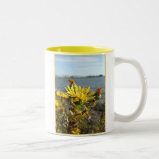 California coastal wildflower mug