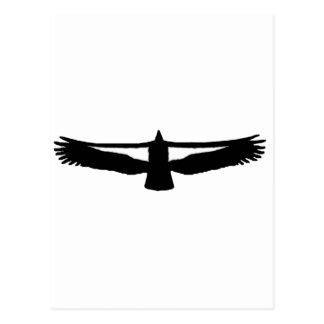 California Condor Post Card