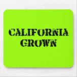 California crecida alfombrillas de ratones