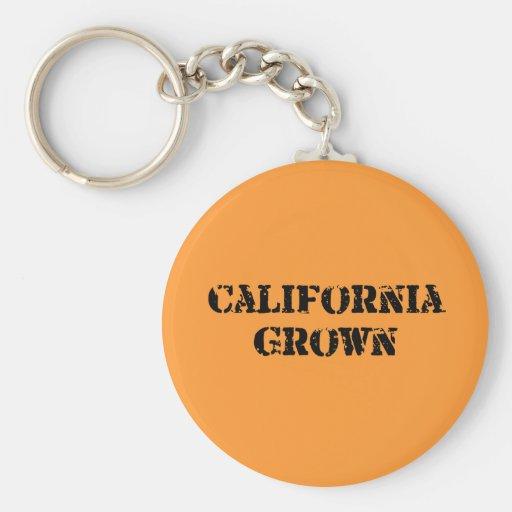 California crecida llaveros