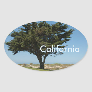 California Cypress Stickers