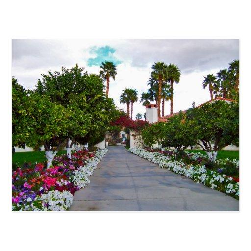 California Desert Resort Postcard