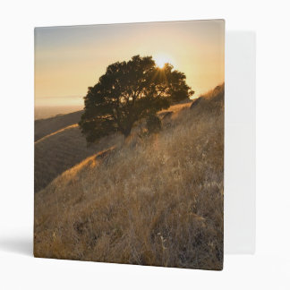 California East Bay Hills in Summer binder