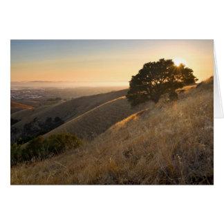 California East Bay Hills in Summer greeting card