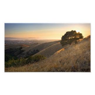 California East Bay Hills in Summer photo enlrgmnt