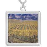 California, el condado de San Luis_obispo, valle Colgante Cuadrado