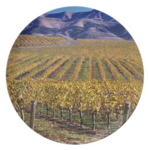 California, el condado de San Luis_obispo, valle d Platos De Comidas
