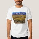 California, el condado de San Luis_obispo, valle Poleras