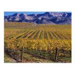 California, el condado de San Luis_obispo, valle Postal
