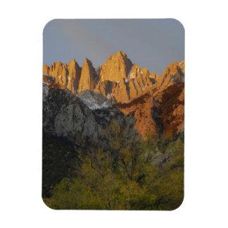 California, el Monte Whitney, bosque del Estado 3  Rectangle Magnet