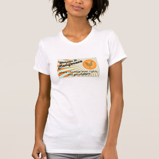 California Equal Rights Ladies Fitted V-Neck T-Shirt