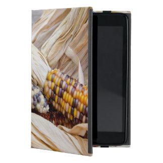 California. Fall Harvest Colorful Indian Corn Case For iPad Mini