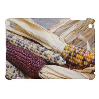 California. Fall Harvest Colorful Indian Corn Cover For The iPad Mini