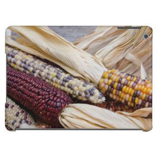 California. Fall Harvest Colorful Indian Corn iPad Air Case