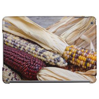 California. Fall Harvest Colorful Indian Corn iPad Air Covers