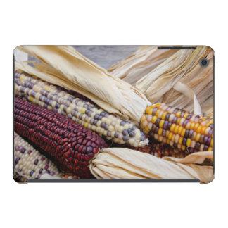California. Fall Harvest Colorful Indian Corn iPad Mini Cases