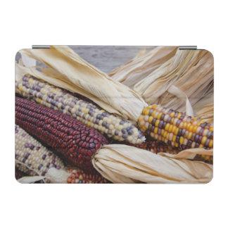 California. Fall Harvest Colorful Indian Corn iPad Mini Cover