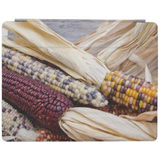 California. Fall Harvest Colorful Indian Corn iPad Smart Cover