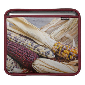 California. Fall Harvest Colorful Indian Corn Sleeve For iPads