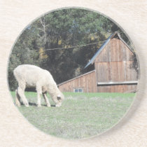 California Farm Coaster