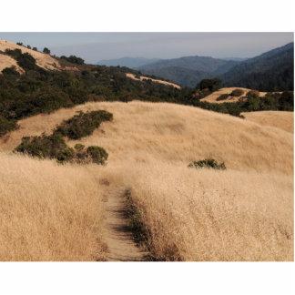 California foothills photo sculpture