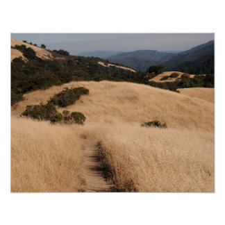 California foothills small poster