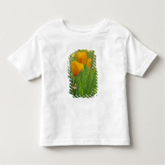 California golden poppies in a green field toddler t-shirt